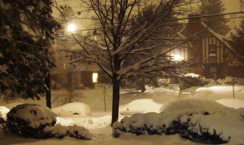 12-2009 blizzard 2