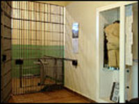 Stasi_museum_cell